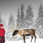 Peak of Christmas at Grouse Mountain – November 26 – December 24, 2011