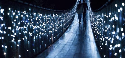Canyon Lights at Capilano Suspension Bridge Park - November 29, 2014 – January 3, 2015 2 1