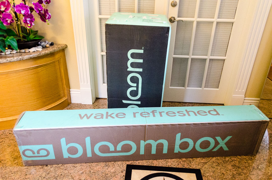 giveaway sleep country bloom is the best mattress in a. Black Bedroom Furniture Sets. Home Design Ideas